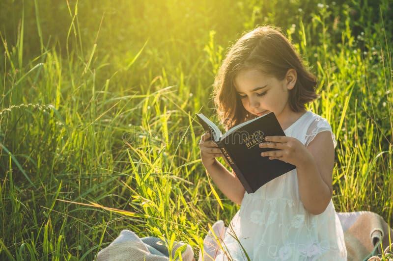 A menina cristã guarda a Bíblia em suas mãos Lendo a Bíblia Sagrada em um campo durante o por do sol bonito Conceito para a fé fotos de stock