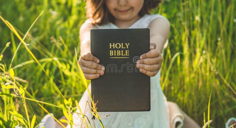 A menina cristã guarda a Bíblia em suas mãos Lendo a Bíblia Sagrada em um campo durante o por do sol bonito Conceito para a fé imagens de stock royalty free