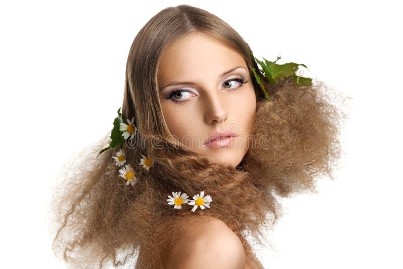 Menina da beleza com folhas e camomila no cabelo fotos de stock royalty free