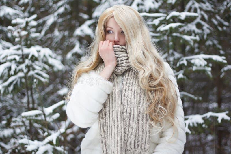 Menina da beleza na floresta do inverno imagens de stock royalty free