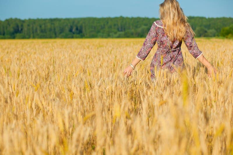 Menina da beleza no campo de trigo fotografia de stock royalty free