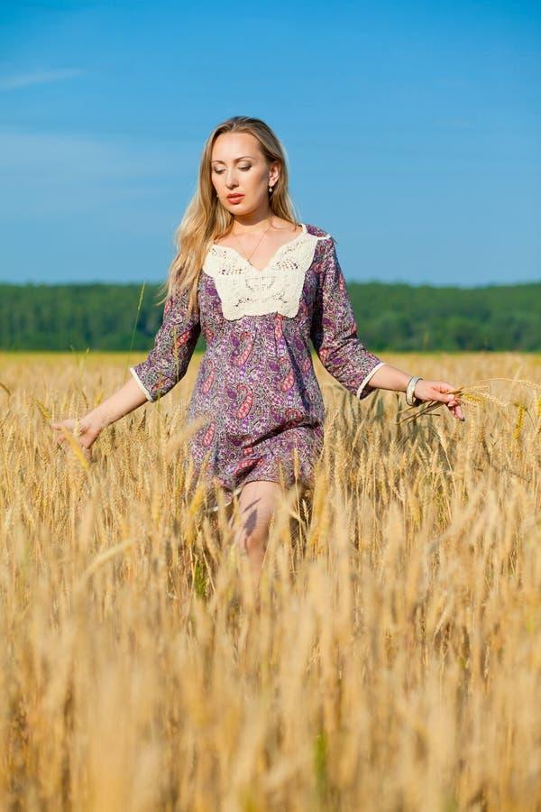 Menina da beleza no campo de trigo fotografia de stock