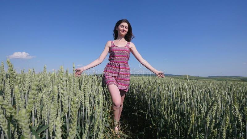 Menina da beleza que corre no campo de trigo verde Conceito da liberdade Mulher feliz ao ar livre colheita foto de stock royalty free