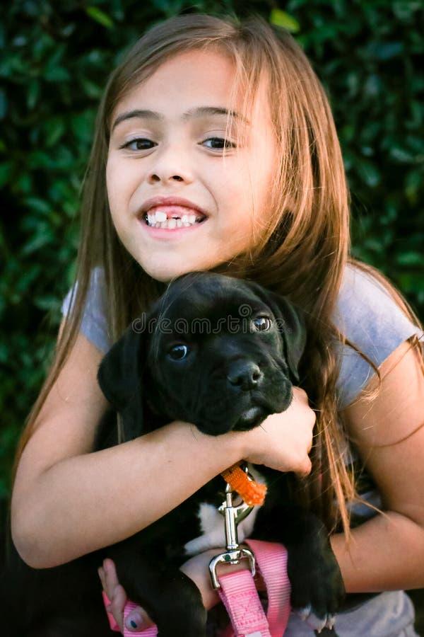 Menina da criança de seis anos que guarda o cachorrinho preto do pugilista-pitbull foto de stock