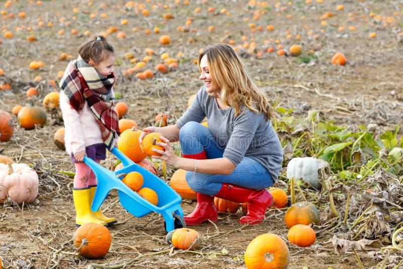 Menina da criança e mãe bonita que têm o divertimento com cultivo em um remendo da abóbora Festival tradicional da família com fotografia de stock