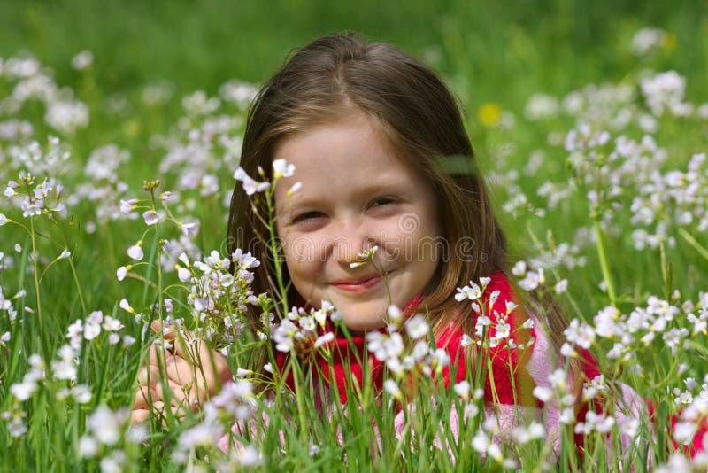 Menina da criança em uma grama foto de stock royalty free
