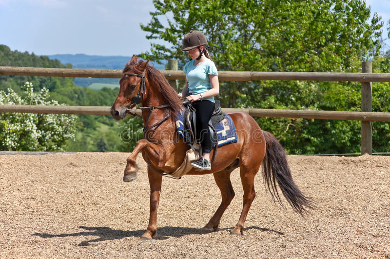 Menina da equitação foto de stock