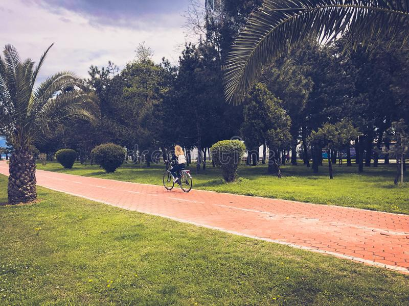 Menina da mulher que monta uma bicicleta na aleia com as palmeiras verdes no parque em um recurso de ver?o morno tropical foto de stock royalty free