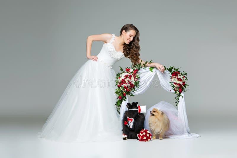 A menina da noiva com pares do casamento do cão sob a flor arqueia fotografia de stock