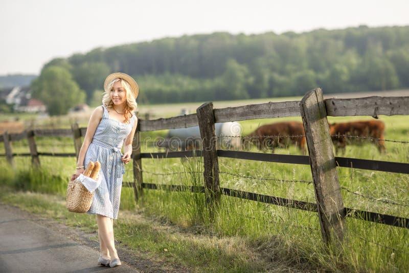 Menina da vila com um saco do leite e do p?o que atravessam os campos com pastagem de vacas Vida rural do ver?o em Alemanha fotos de stock