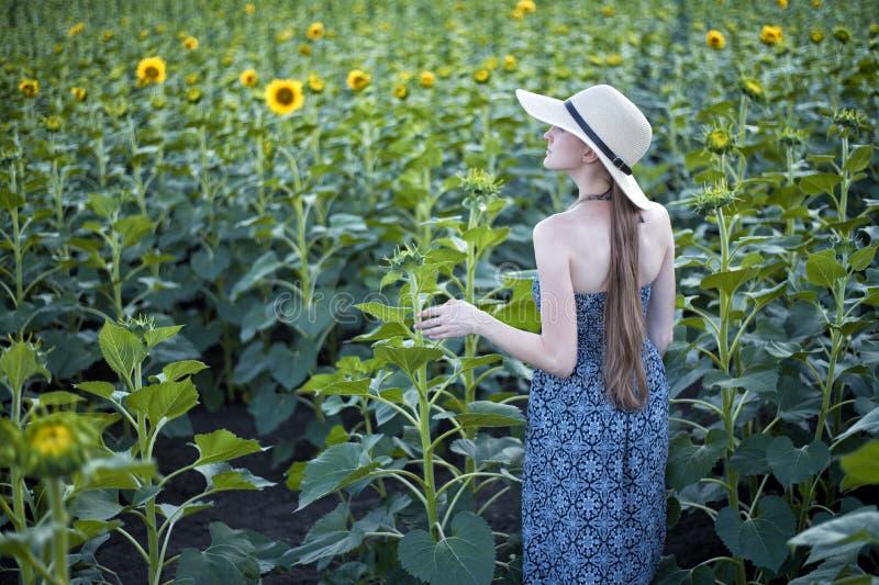 Menina de cabelos compridos em suportes de um chapéu e do vestido com o seu para trás na perspectiva de um campo de florescência  fotografia de stock royalty free