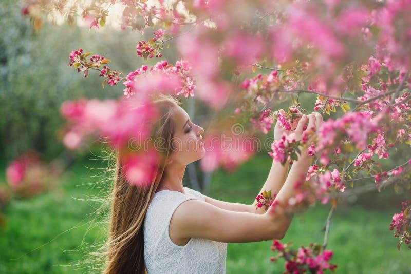 Menina de cabelos compridos que realiza na sua a mão um ramo da flor de Sakura imagens de stock royalty free