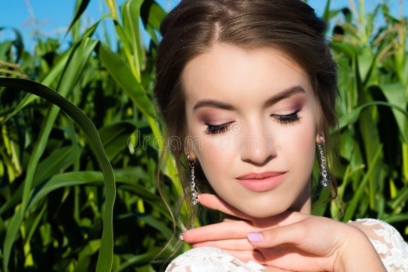 Menina de composição elegante bonita no fundo do milho imagens de stock royalty free