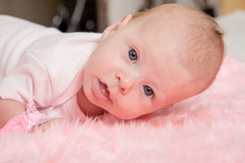A menina de dois meses que tenta levantar sua cabeça que encontra-se em seu estômago fotos de stock