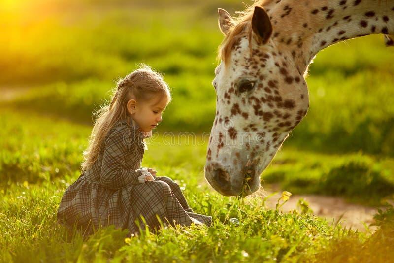 Menina de encantamento com o cavalo manchado bonito fotografia de stock