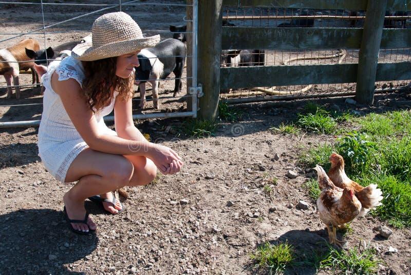 Menina de exploração agrícola com galinhas fotos de stock
