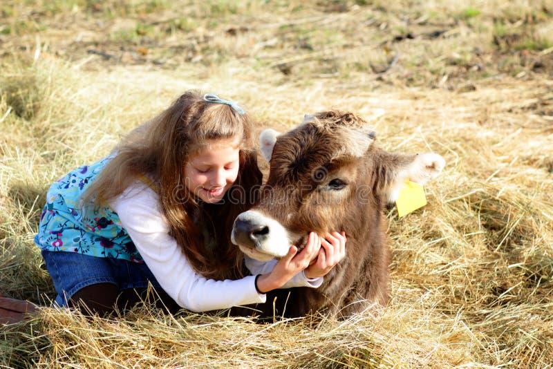 Menina de exploração agrícola e vaca do animal de estimação imagem de stock royalty free