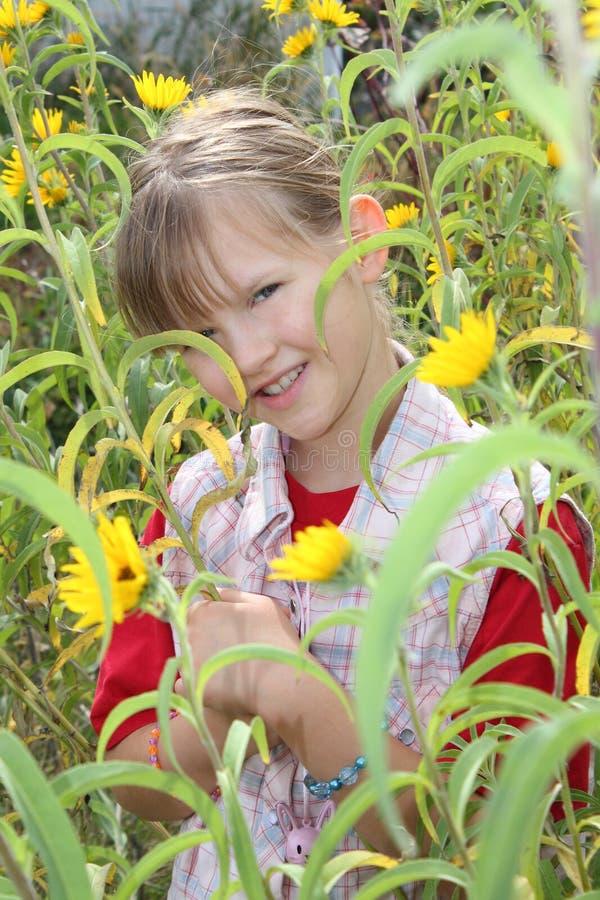 Menina de exploração agrícola na correcção de programa do girassol fotografia de stock royalty free