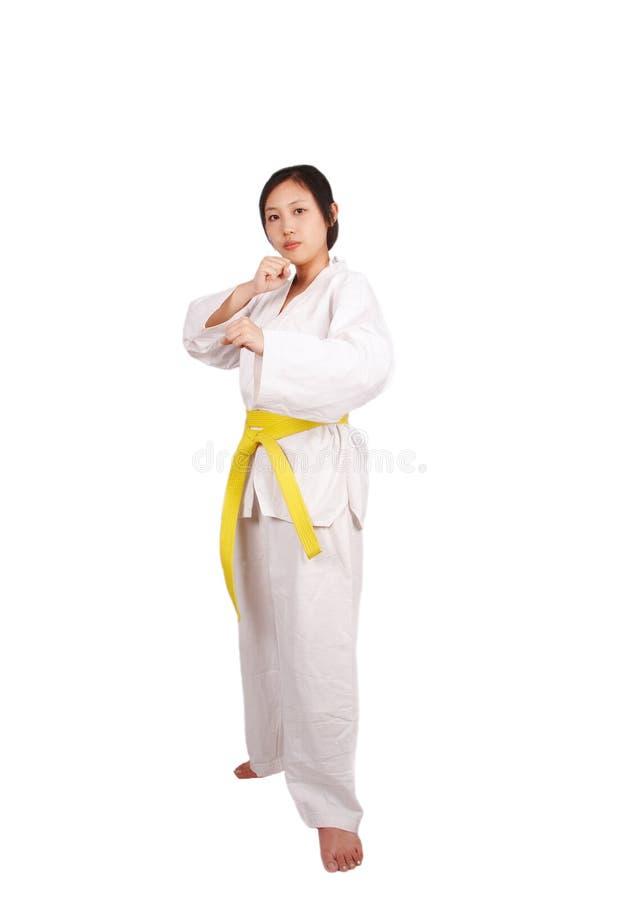 Menina de Kungfu fotografia de stock royalty free