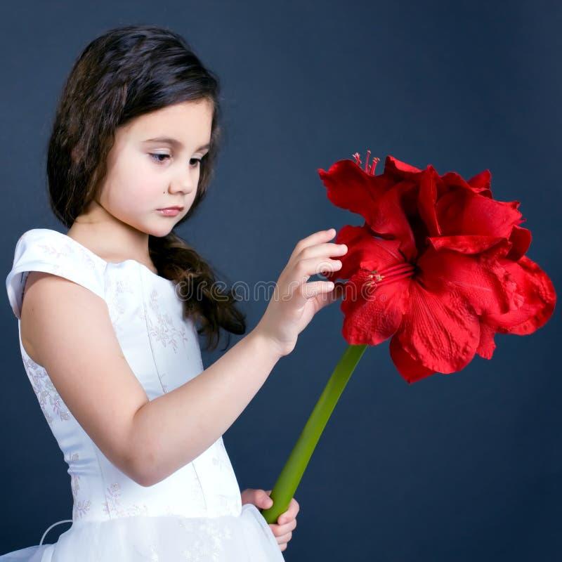 Menina de sonho bonita imagens de stock