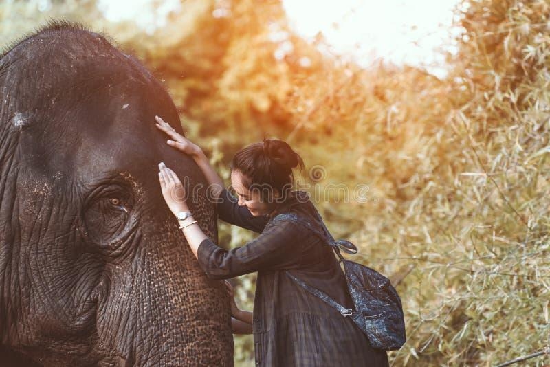 A menina de sorriso abraça um elefante foto de stock royalty free