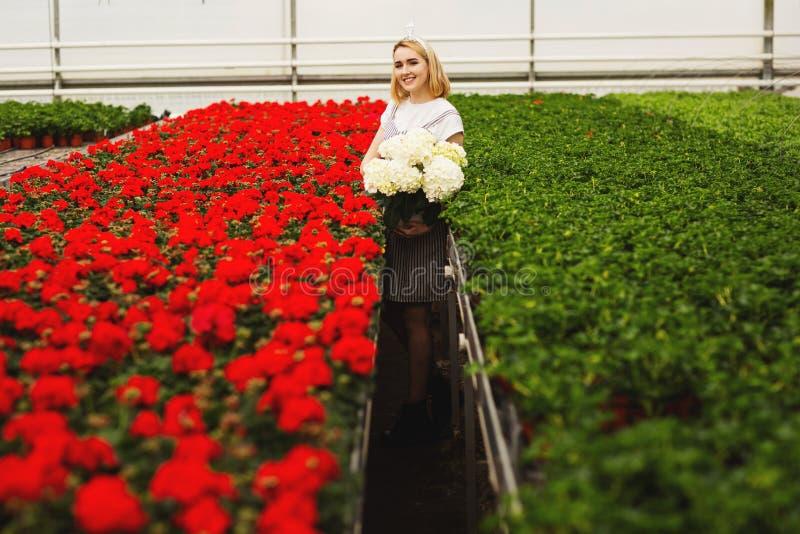 Menina de sorriso nova bonita no vestido, trabalhador com as flores na estufa A menina guarda as flores brancas fotografia de stock
