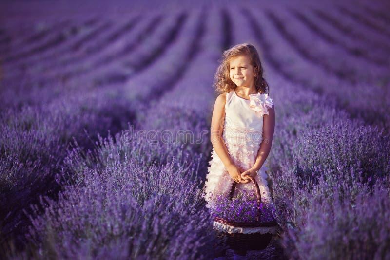 Menina de sorriso que aspira flores em um campo da alfazema imagem de stock royalty free