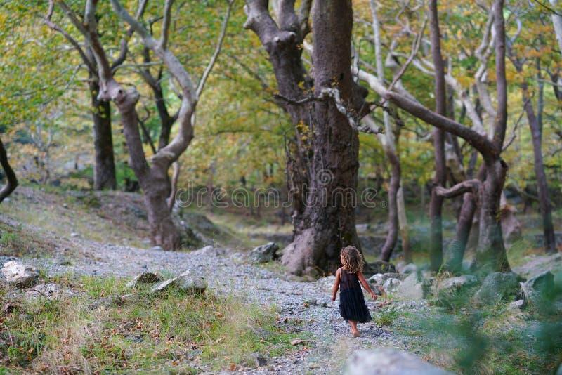 menina de três anos na natureza bonita da montagem Dirfi em Euboea fotografia de stock royalty free
