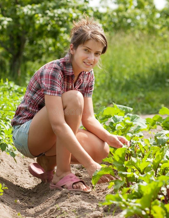 Menina do adolescente que trabalha no campo fotografia de stock royalty free