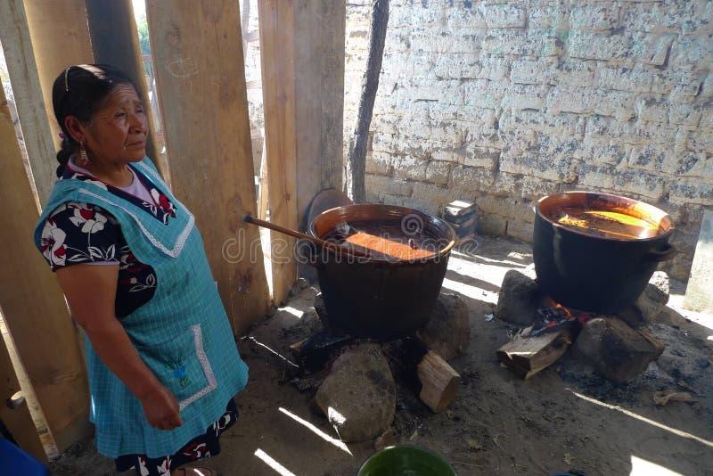 A menina do cozinheiro de Totonaco do magico do povoado indígeno de Cuetzalan relacionou-se ao presidente esquerdista do partido  fotografia de stock