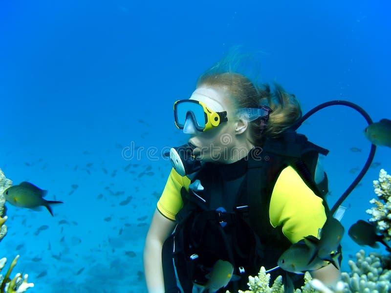 Menina do mergulho foto de stock royalty free