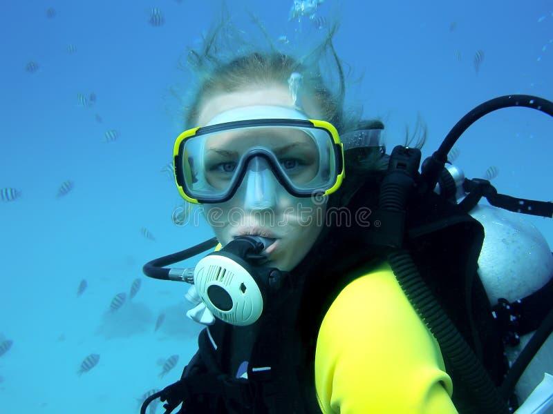 Menina do mergulho imagens de stock