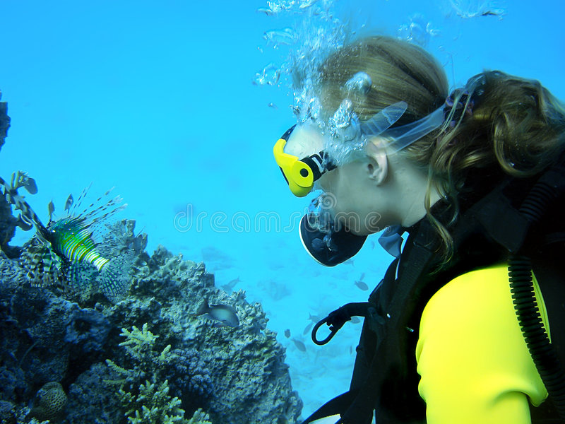 Menina do mergulho imagem de stock royalty free