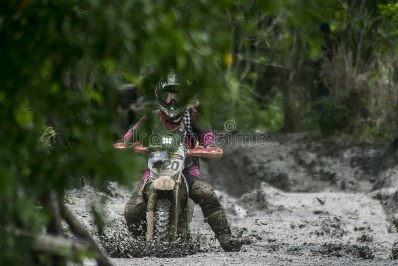 Menina do motociclista, correndo na rota do café imagens de stock royalty free