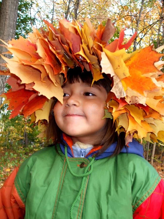 Menina do outono imagem de stock