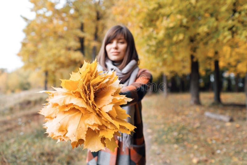 Menina do outono que anda no parque da cidade Retrato da jovem mulher bonita e bonita feliz na floresta em cores da queda Foco so imagens de stock