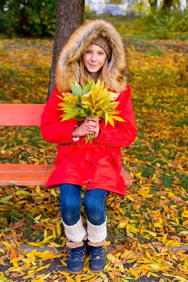 Menina do Preteen no parque do outono com folhas imagens de stock