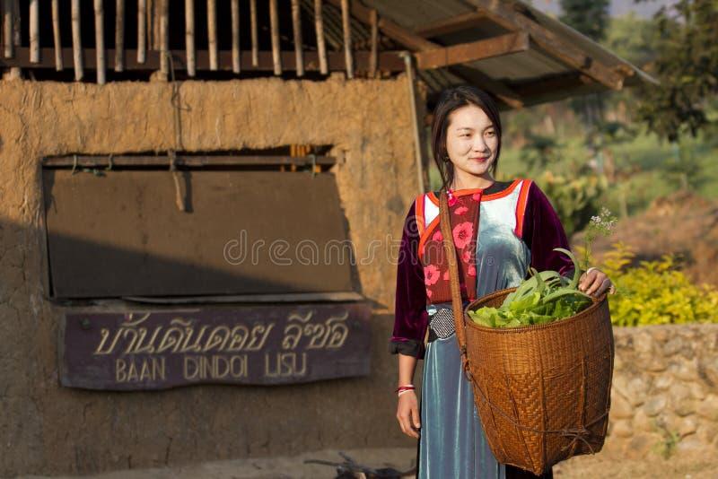 Menina do tribo do monte de Lisu com seu vegetal foto de stock royalty free