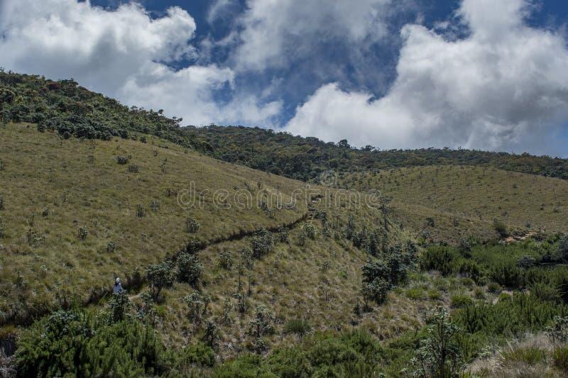 Menina do turista que anda para os montes i o parque nacional fotografia de stock royalty free