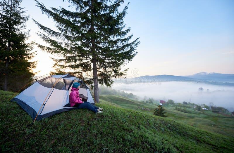 Menina do turista que senta-se apenas na entrada da barraca do turista no monte verde gramíneo sob o pinheiro foto de stock royalty free