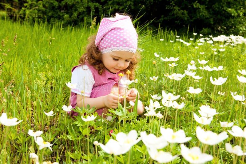 Menina doce da criança fotografia de stock royalty free