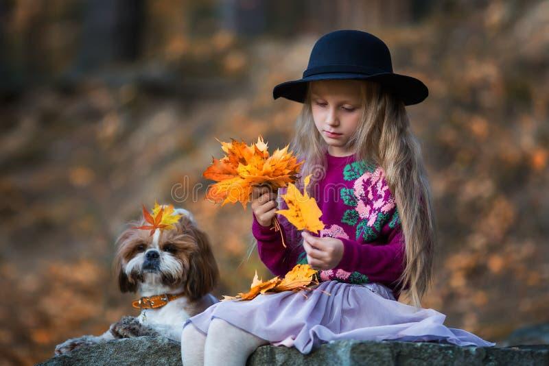 A menina doce em um chapéu tece a grinalda das folhas de bordo do outono imagens de stock royalty free