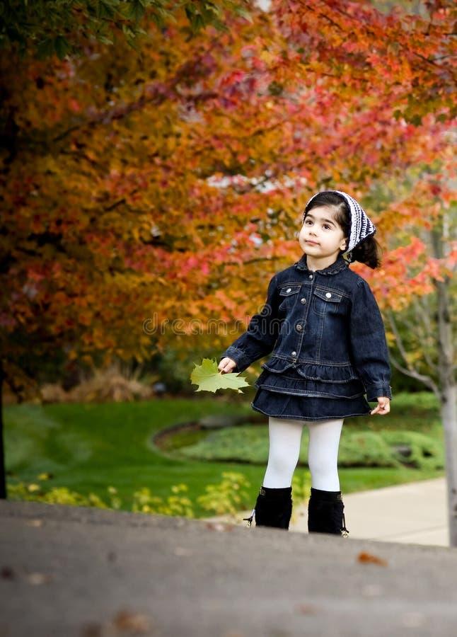 Menina e árvores vermelhas do outono imagem de stock royalty free