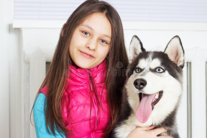 Menina e cão fotos de stock