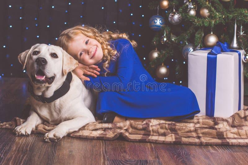 Menina e cão de Labrador, conceito do Natal fotografia de stock royalty free