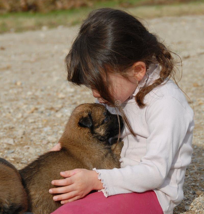 Menina e cão pequeno fotografia de stock