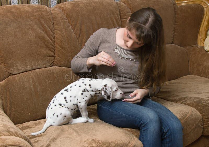 Menina e cachorrinho foto de stock