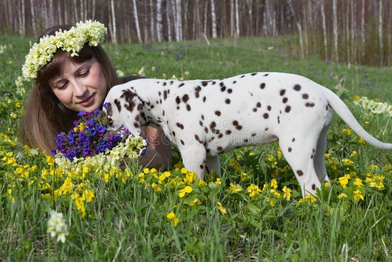 Menina e cachorrinho imagem de stock royalty free