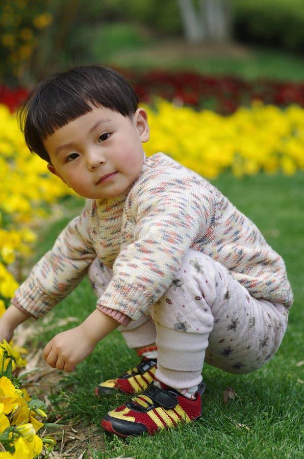 Menina e flor fotos de stock