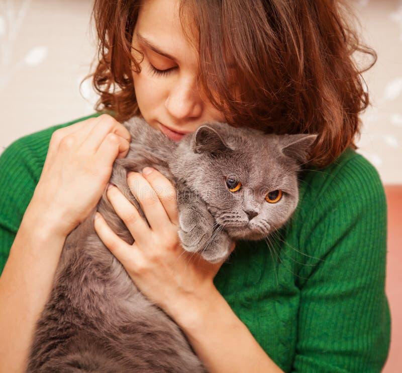 Menina e gato britânico cinzento foto de stock royalty free
